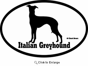 Italian Greyhound Bumper Sticker Euro