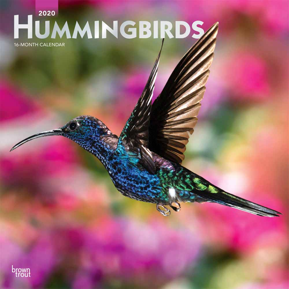 2020 Hummingbirds Calendar