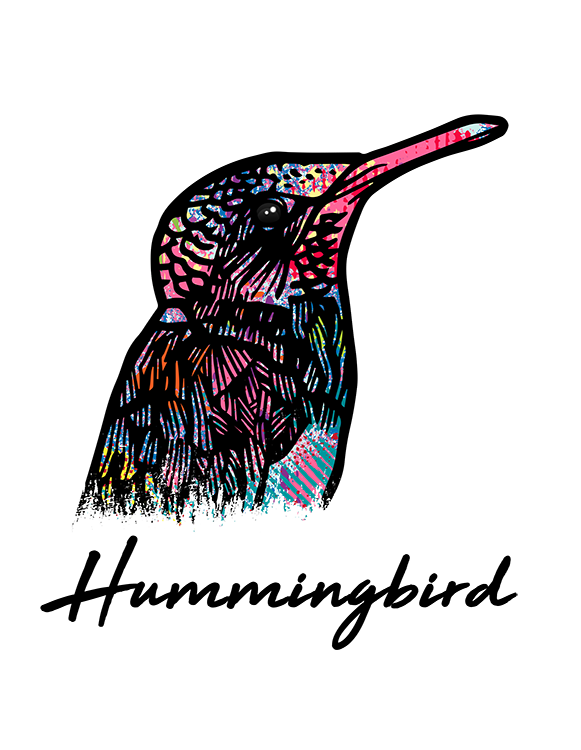 Hummingbird T Shirt Colorful Abstract
