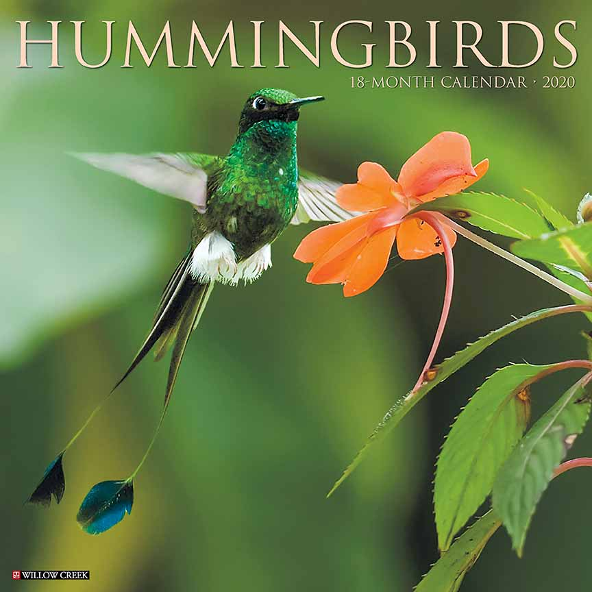 2020 Hummingbirds Calendar Willow Creek