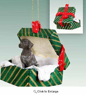 German Shorthaired Pointer Gift Box Christmas Ornament