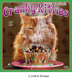 2020 Cranky Kitties Calendar