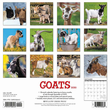 2020 Goats Calendar Willow Creek