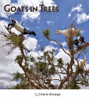 2020 Goats in Trees Calendar