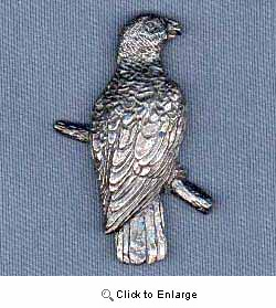 African Gray Parrot Pin