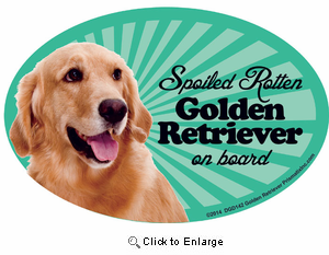 Golden Retriever Car Magnet - Spoiled Rotten