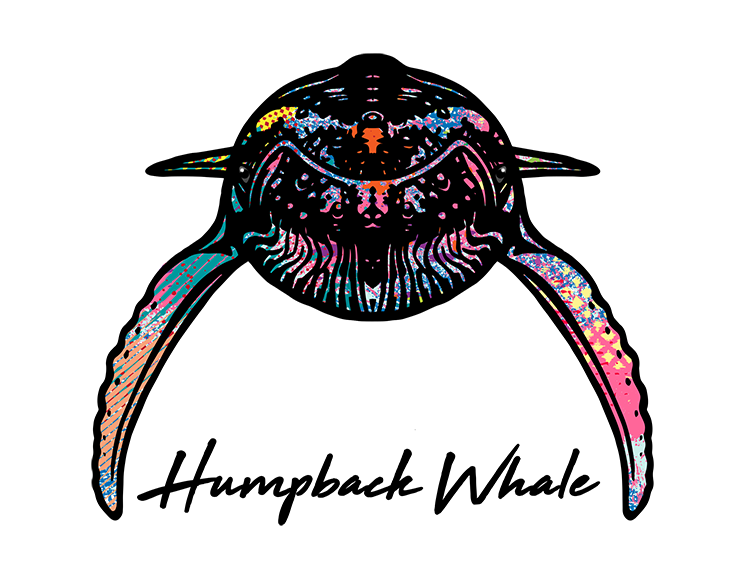 Humpback Whale T Shirt Colorful Abstract