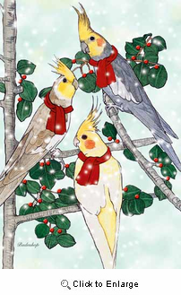 Cockatiel Christmas Cards