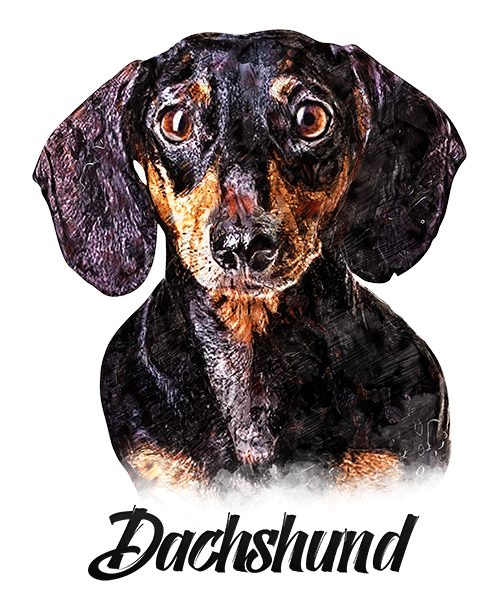 Dachshund T-Shirt - Vivid Colors