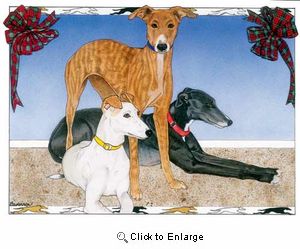 Greyhound Christmas Cards Trio