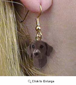 Pointer Authentic Earrings