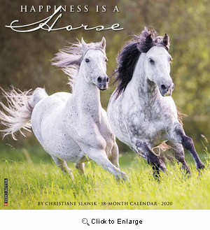 2020 Happiness is a Horse Calendar