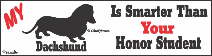Dachshund Bumper Sticker Honor Student