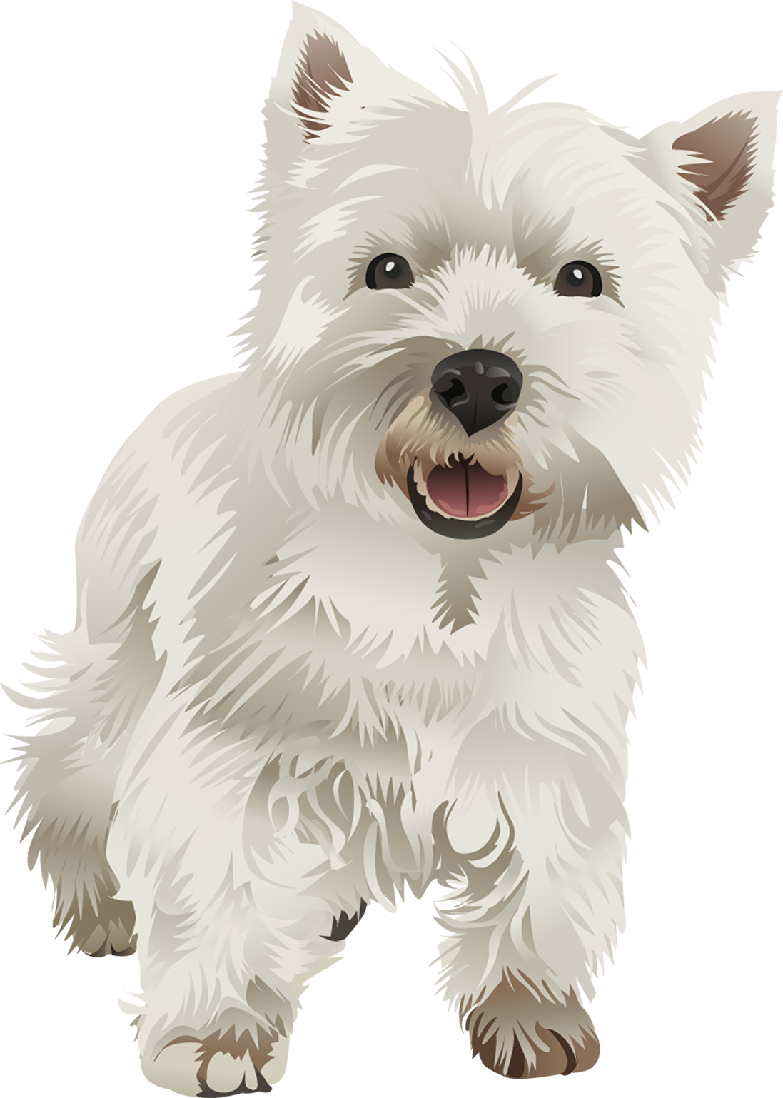 West Highland Terrier T-Shirt - Vibrant Vector