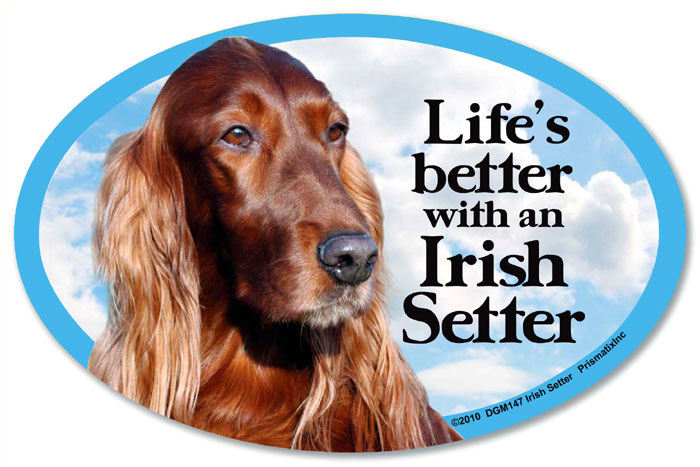 Irish Setter Car Magnet - Life's Better