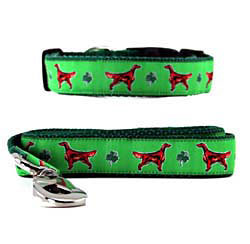 Irish Setter Collar & Leash