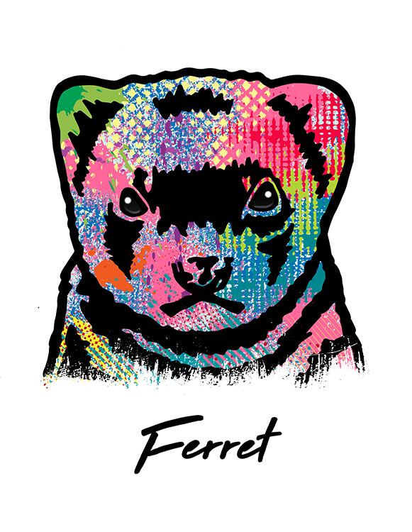 Ferret T Shirt Colorful Abstract