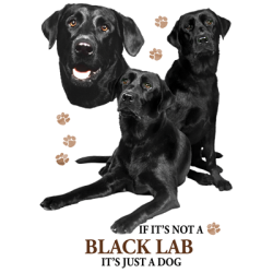 Black Lab T-Shirt - Perfectly Portrayed