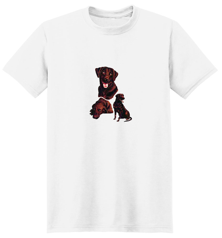 Chocolate Lab T-Shirt - Collage