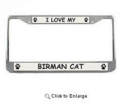 Birman Cat License Plate Frame