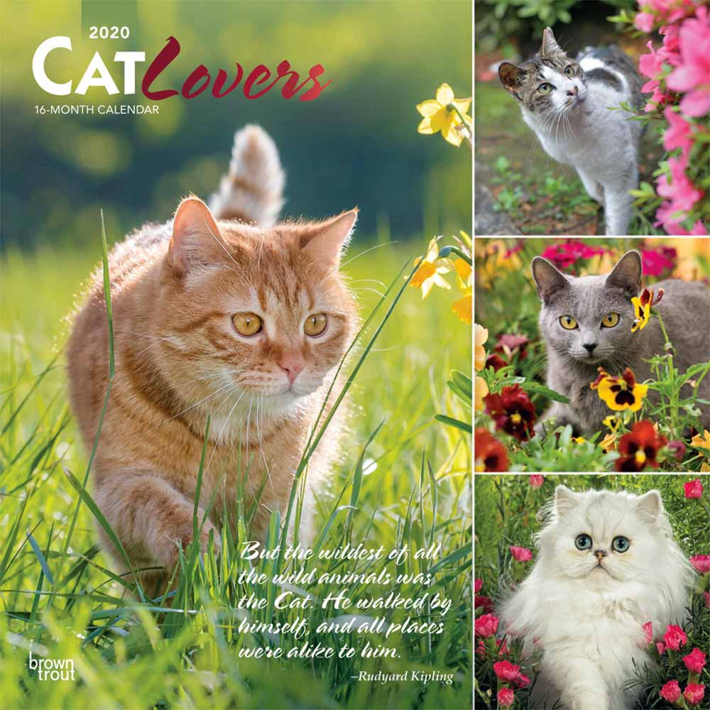 2020 Cat Lovers Calendar