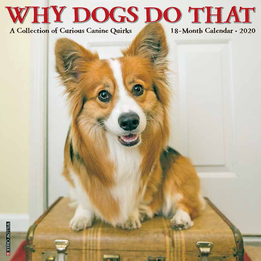 2020 Why Dogs Do That Calendar Willow Creek
