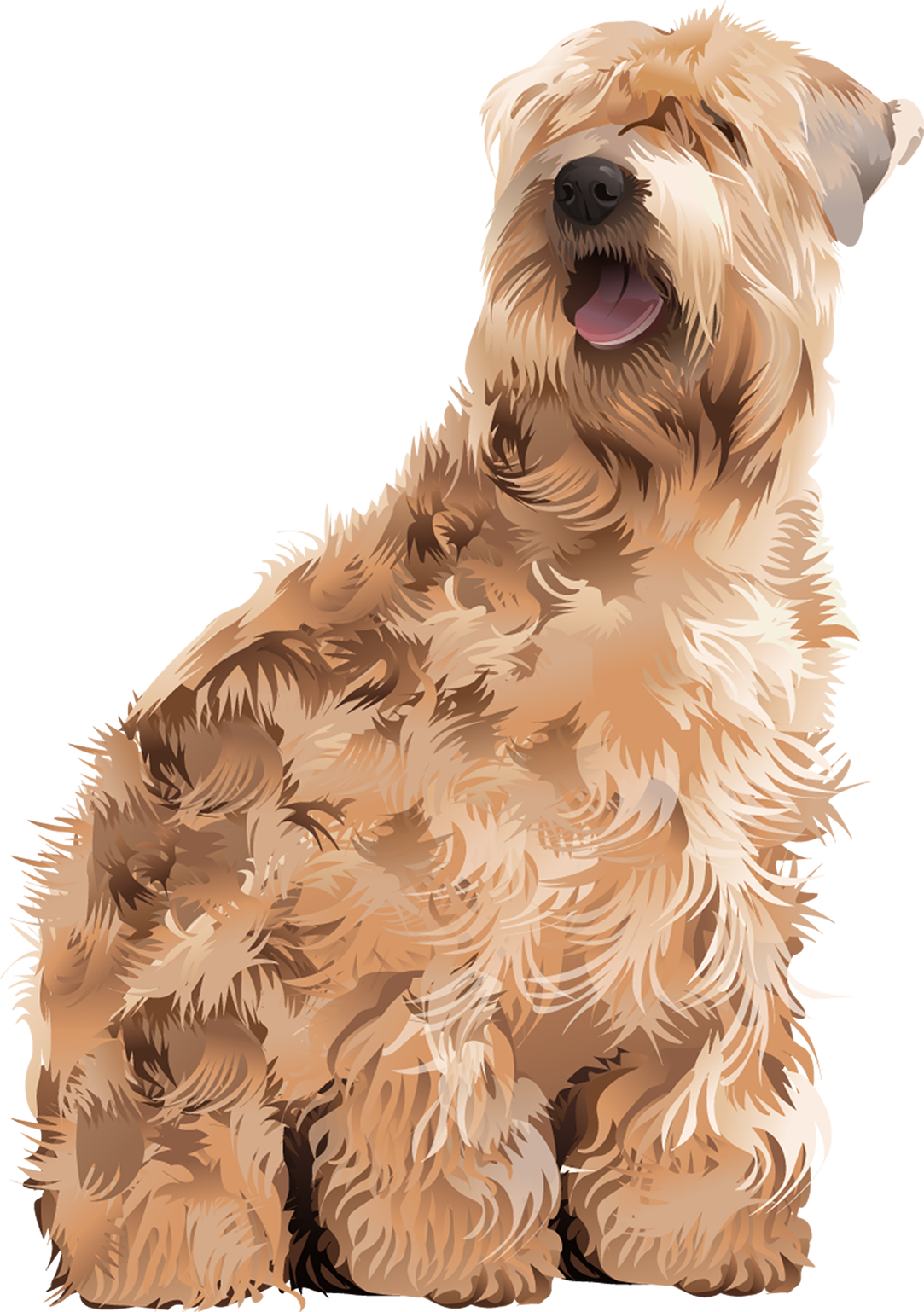 Wheaten Terrier T-Shirt - Vibrant Vector