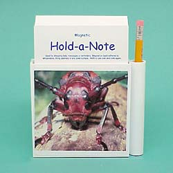 Beetle Hold-a-Note