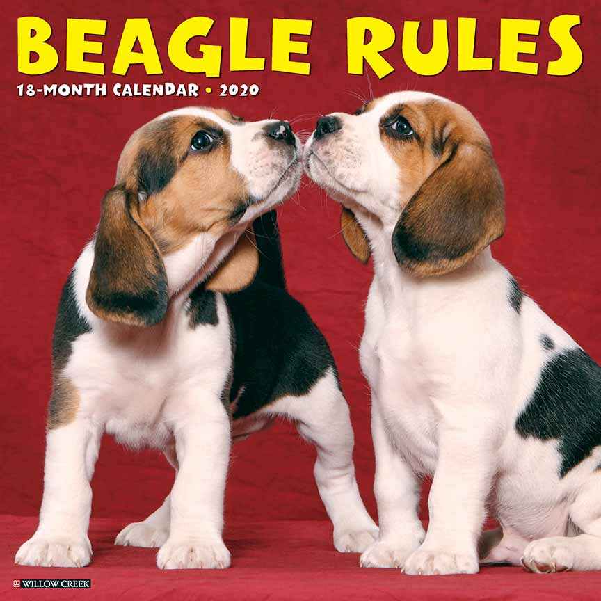 2020 Beagle Rules Calendar Willow Creek