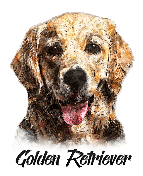 Golden Retriever T-Shirt - Vivid Colors
