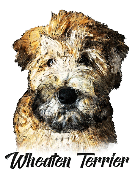 Wheaten Terrier T-Shirt - Vivid Colors