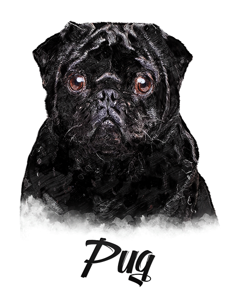 Pug Black T-Shirt - Vivid Colors