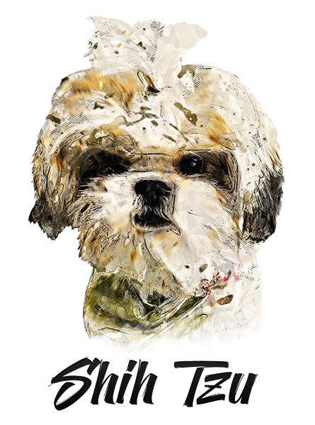 Shih Tzu T-Shirt - Vivid Colors