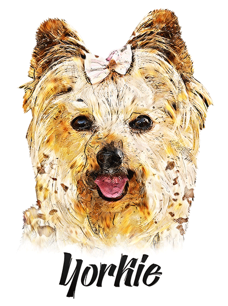 Yorkie T-Shirt - Vivid Colors