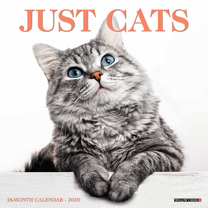 2020 Cats Calendar Willow Creek