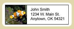 Clownfish Address Labels