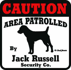 Jack Russell Bumper Sticker Caution