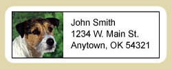 Jack Russell Terrier Address Labels