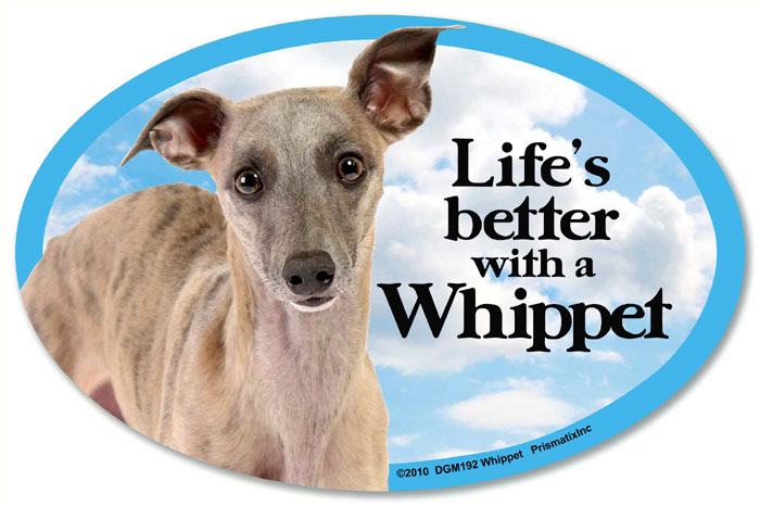 Whippet Car Magnet - Life's Better