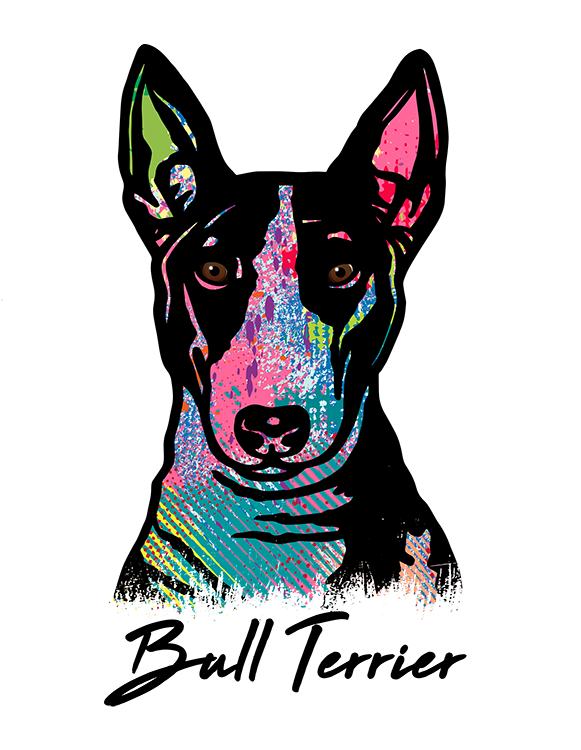 Bull Terrier T Shirt Colorful Abstract