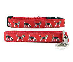 Beagle Collar & Leash