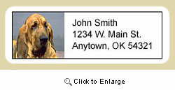 Bloodhound Address Labels
