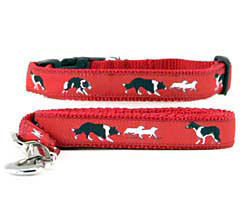 Border Collie Collar & Leash
