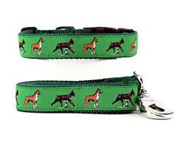 Boxer Collar & Leash