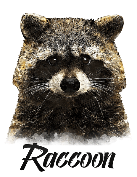 Raccoon T-Shirt - Vivid Colors