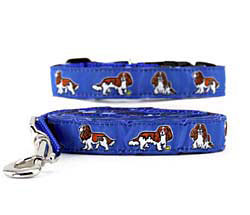 Cavalier King Charles Blenheim Collar & Leash