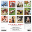 2020 Why Horses Do That Calendar Willow Creek