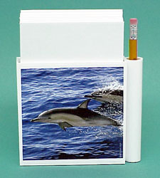 Dolphin Hold-a-Note