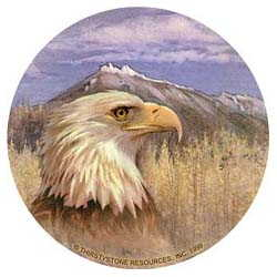 Eagle Drink Coasters