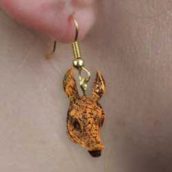 Armadillo Authentic Earrings